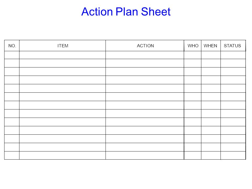Action Plan Sheet NO. ITEM ACTION WHO WHEN STATUS