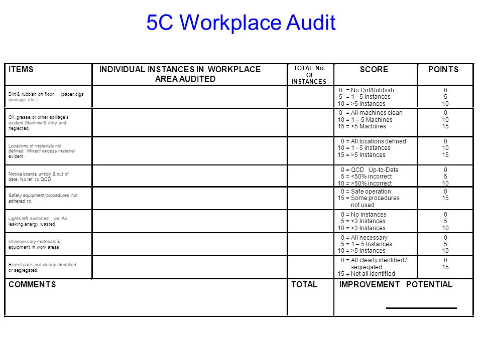 5C Workplace Audit ITEMS INDIVIDUAL INSTANCES IN WORKPLACE