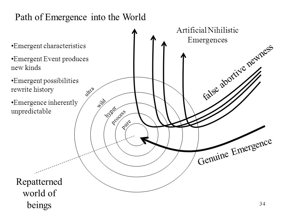 Path of Emergence into the World
