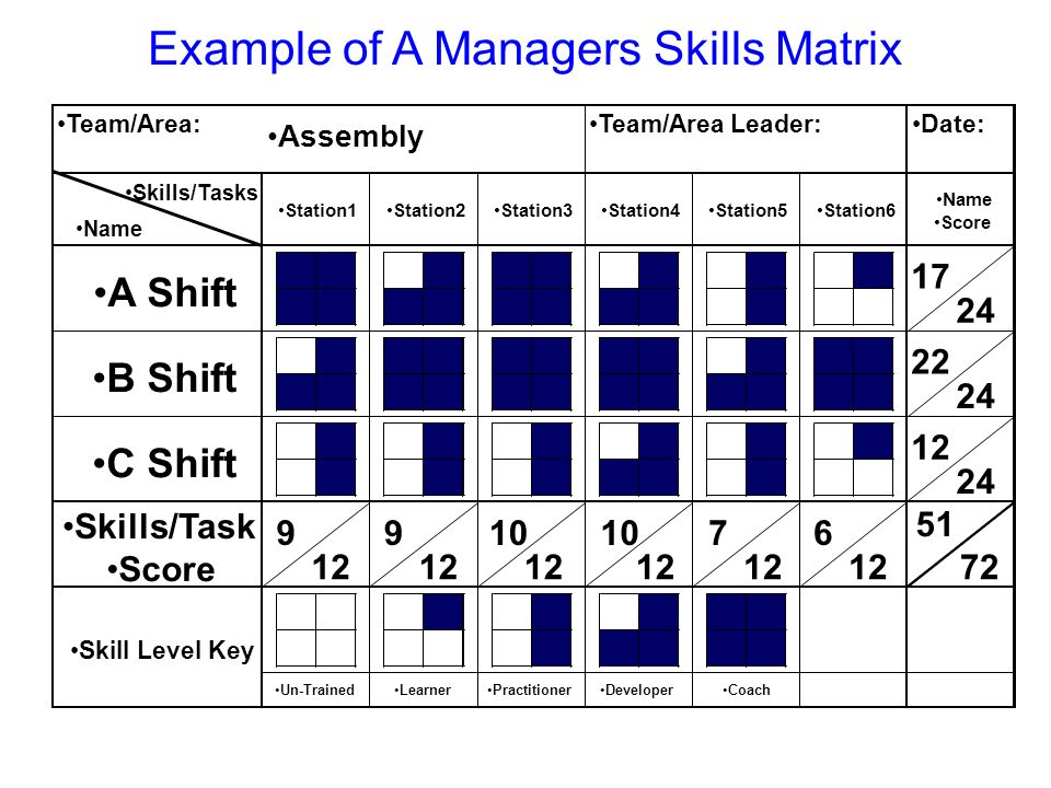 Example of A Managers Skills Matrix