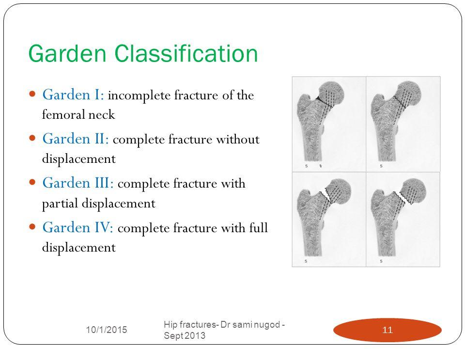 Garden Classification Definition gardenxcyyxhcom : GardenClassification from garden.xcyyxh.com size 960 x 720 jpeg 69kB