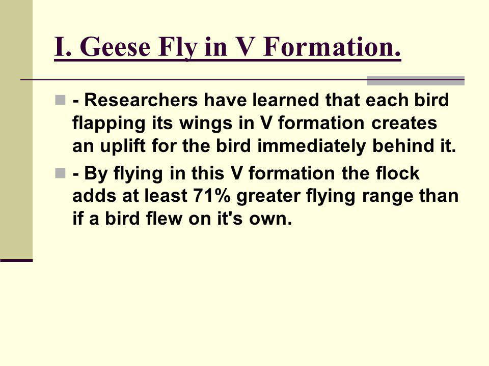 I. Geese Fly in V Formation.
