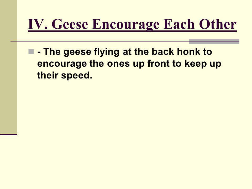 IV. Geese Encourage Each Other