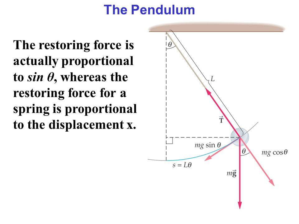 The Pendulum The restoring force is actually proportional to sin θ, whereas the restoring force for a spring is proportional to the displacement x.