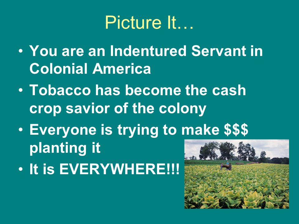 Picture It… You are an Indentured Servant in Colonial America