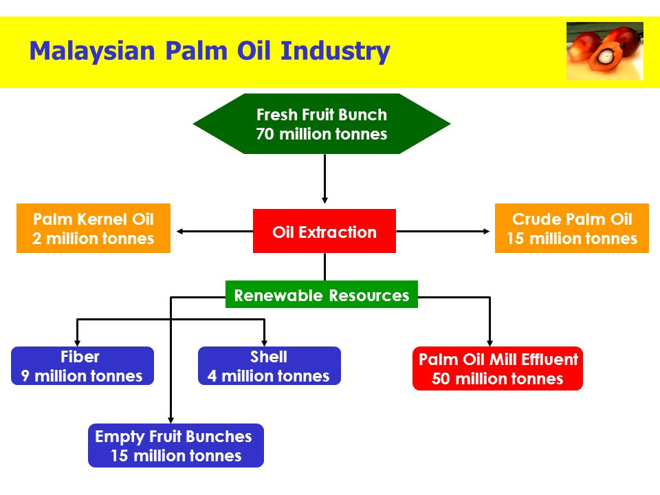malaysias palm oil industry The issue of sustainability in palm oil production is one of the greatest challenges  of the coming decades more than two billion people will be.