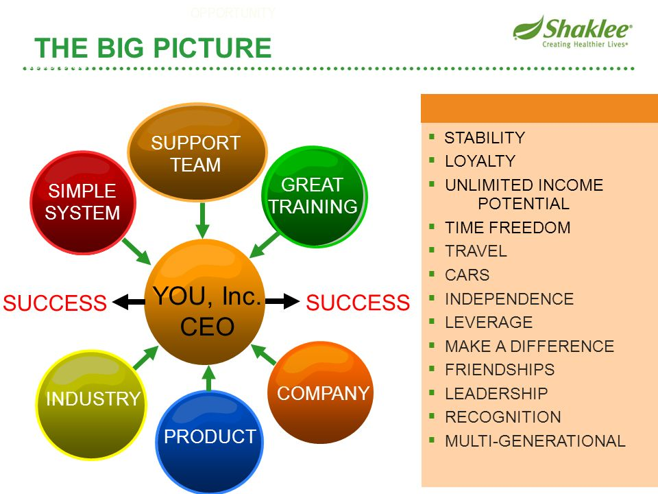 THE BIG PICTURE YOU, Inc. CEO SUCCESS SUCCESS SUPPORT TEAM