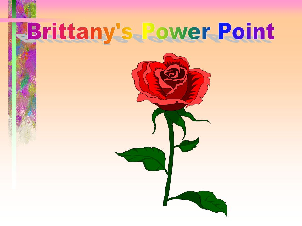 Brittany s Power Point