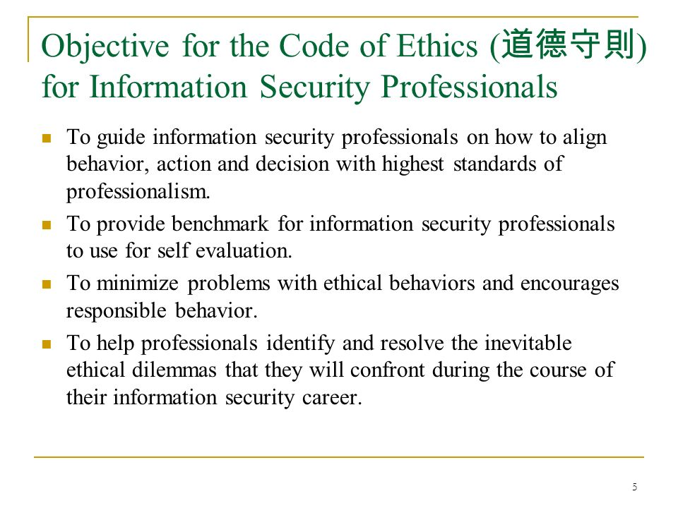 issues in information security pdf