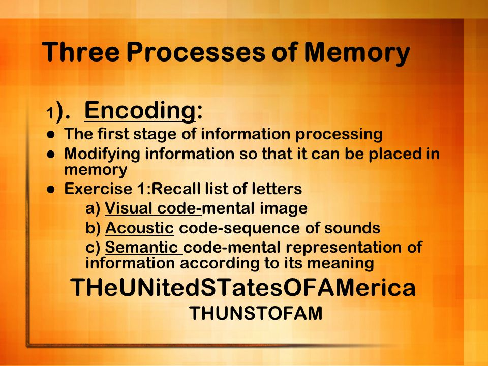 Three Processes of Memory