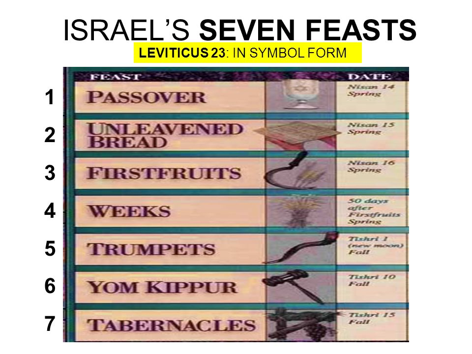 ISRAEL'S SEVEN FEASTS LEVITICUS 23: IN SYMBOL FORM
