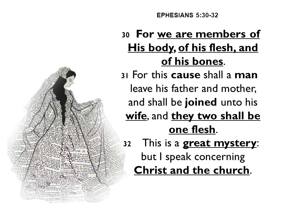 30 For we are members of His body, of his flesh, and of his bones.