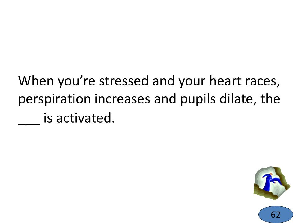 When you're stressed and your heart races, perspiration increases and pupils dilate, the ___ is activated.