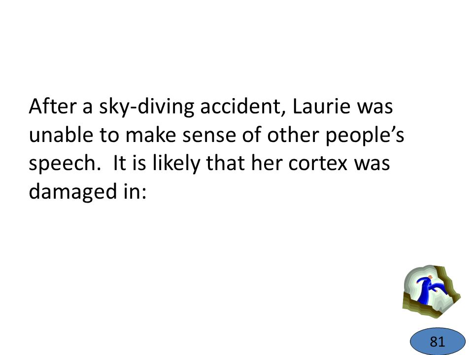 After a sky-diving accident, Laurie was unable to make sense of other people's speech. It is likely that her cortex was damaged in: