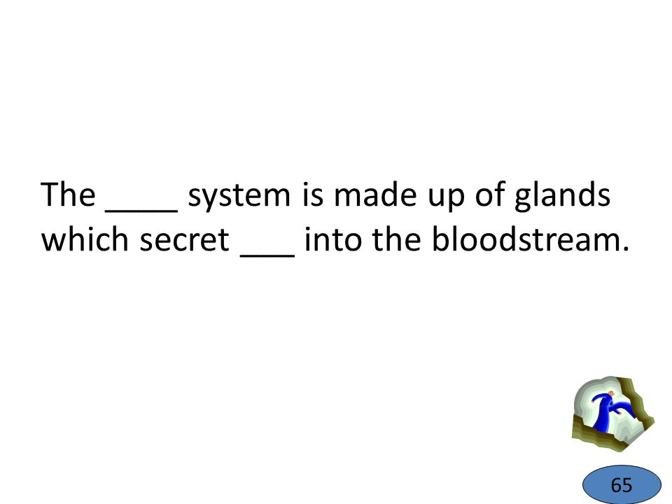 The ____ system is made up of glands which secret ___ into the bloodstream.