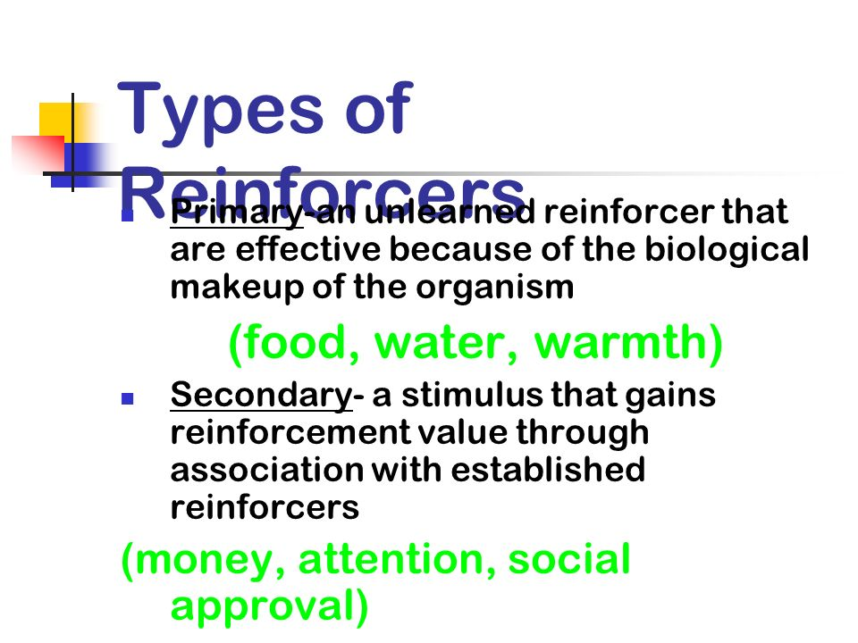 Types of Reinforcers (food, water, warmth)