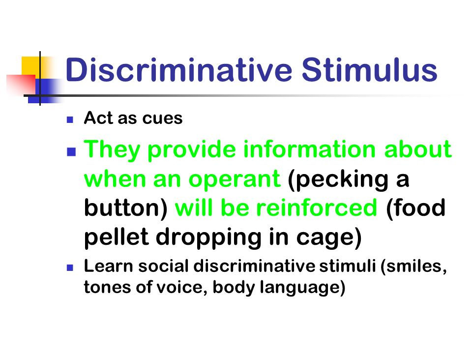 Discriminative Stimulus