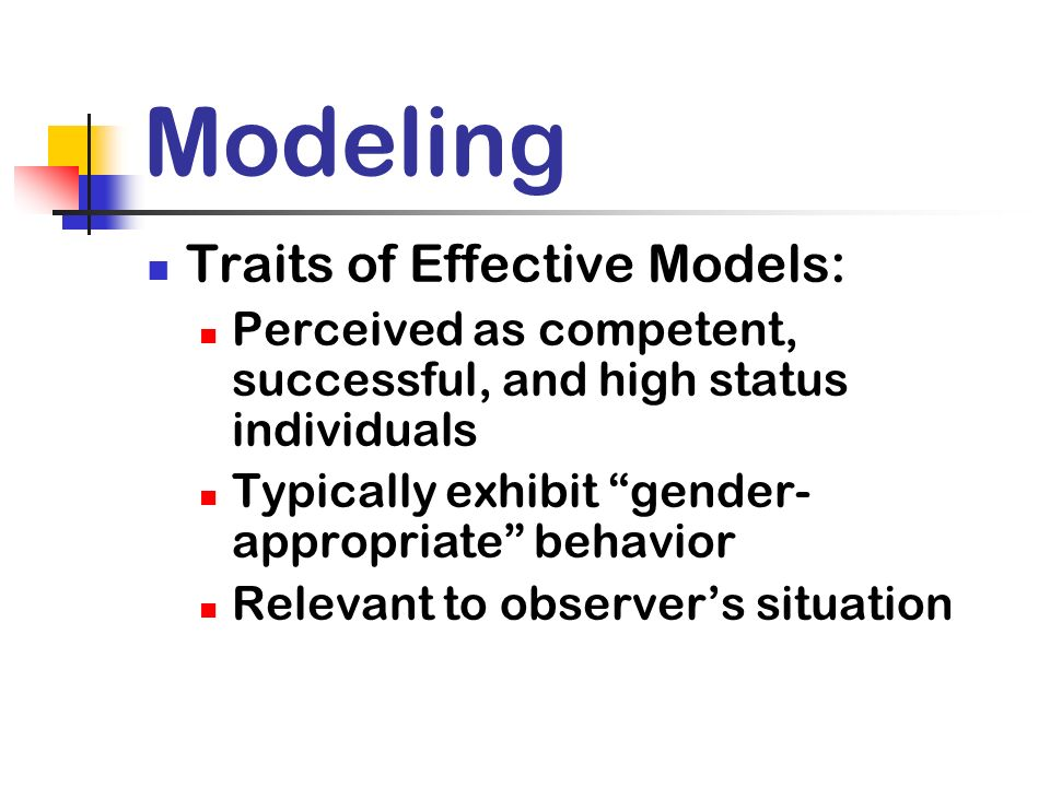Modeling Traits of Effective Models: