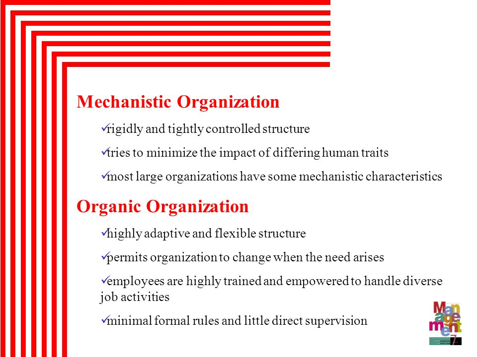 Mechanistic Organization