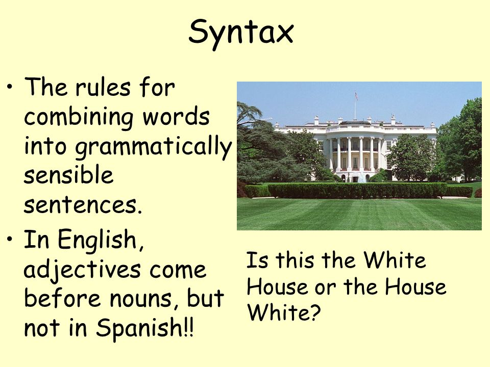 Syntax The rules for combining words into grammatically sensible sentences. In English, adjectives come before nouns, but not in Spanish!!