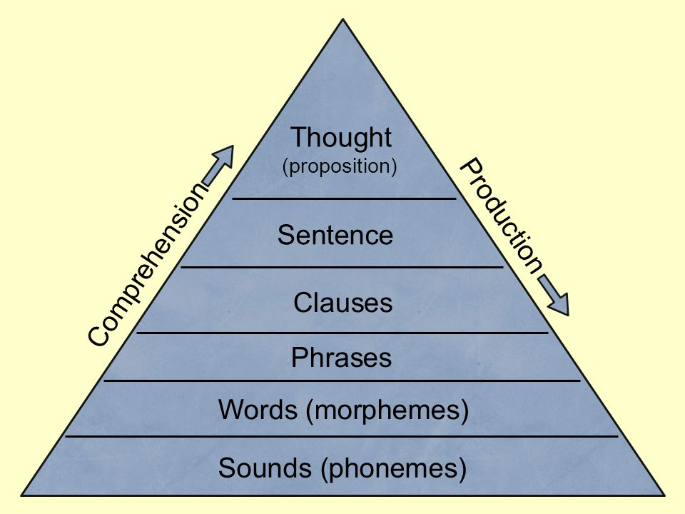 Thought Production Comprehension Sentence Clauses Phrases