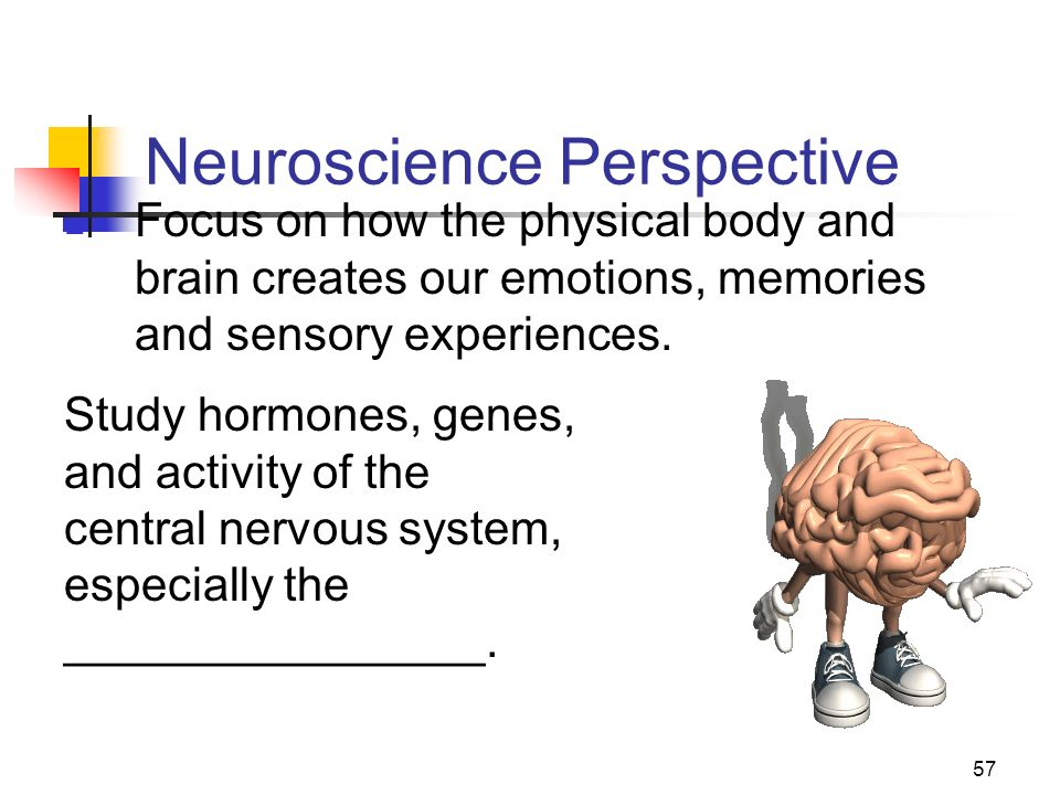 Neuroscience Perspective