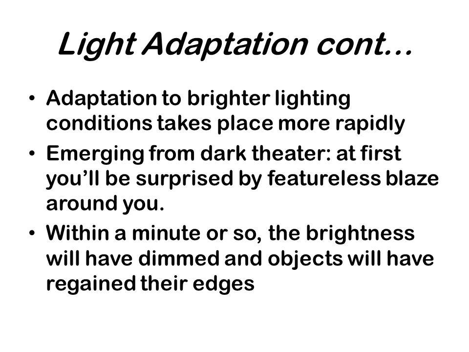 Light Adaptation cont…