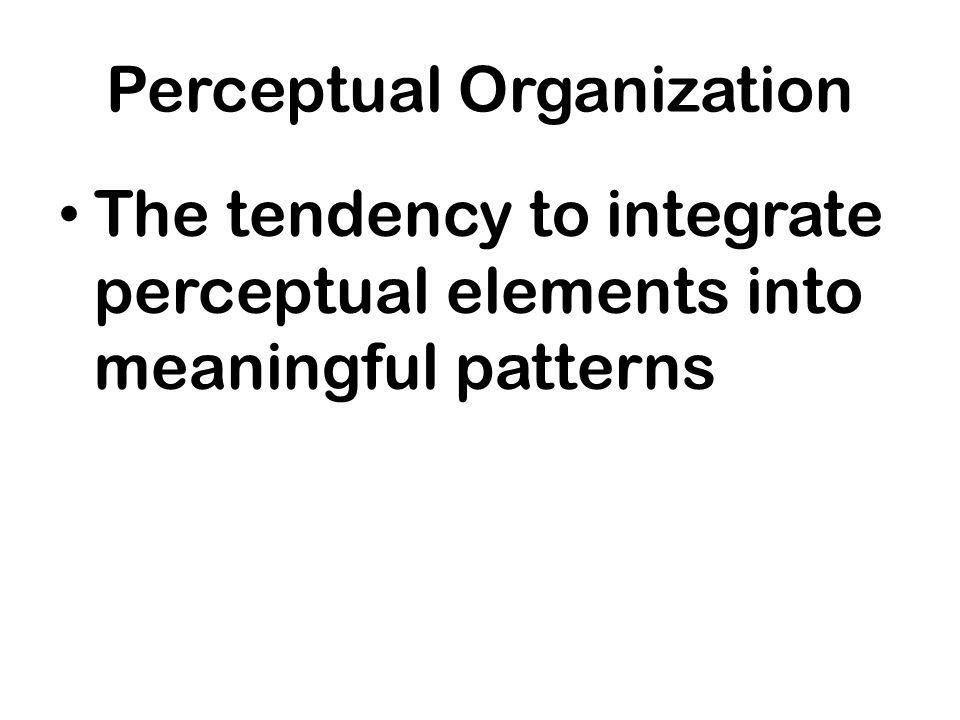 Perceptual Organization