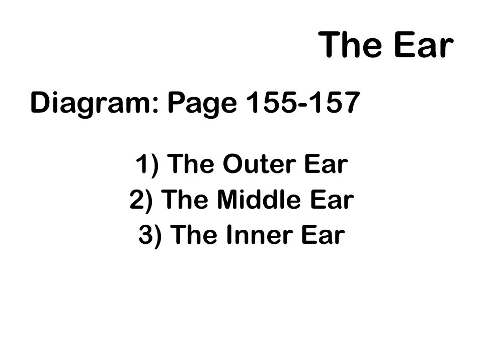 The Ear Diagram: Page 155-157 The Outer Ear The Middle Ear