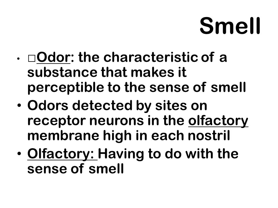 Smell Odor: the characteristic of a substance that makes it perceptible to the sense of smell.