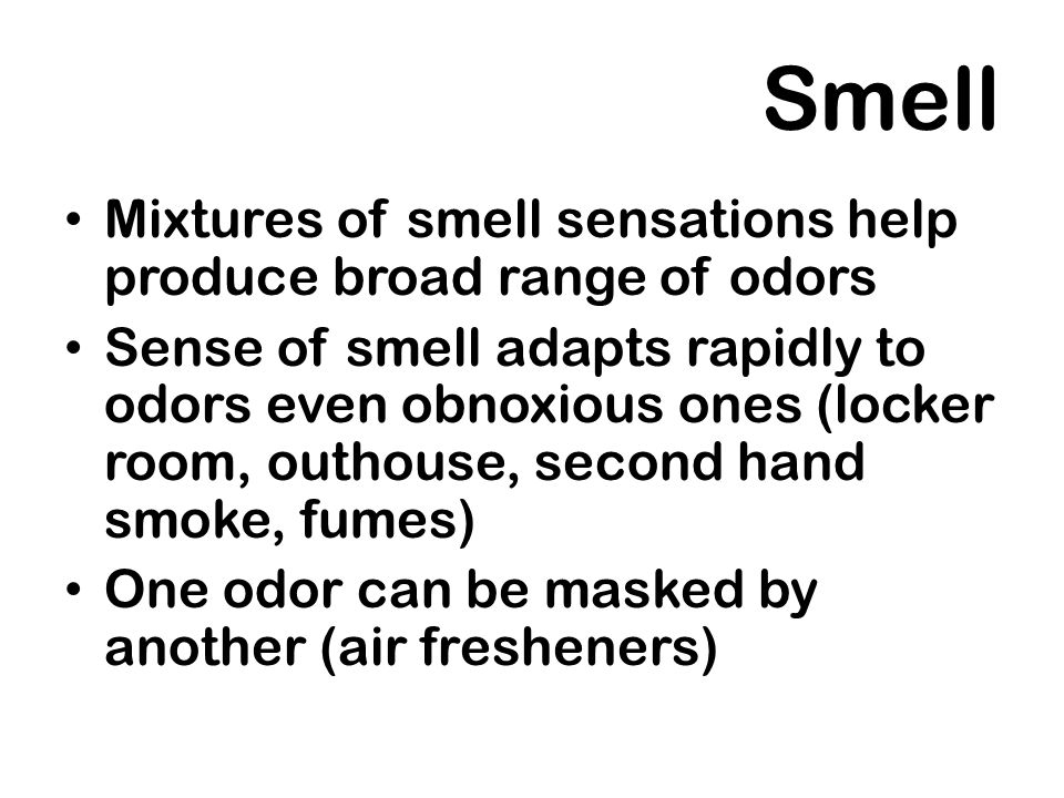Smell Mixtures of smell sensations help produce broad range of odors