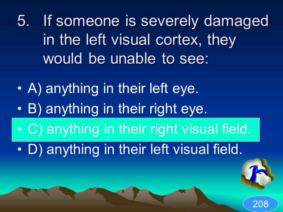 If someone is severely damaged in the left visual cortex, they would be unable to see: