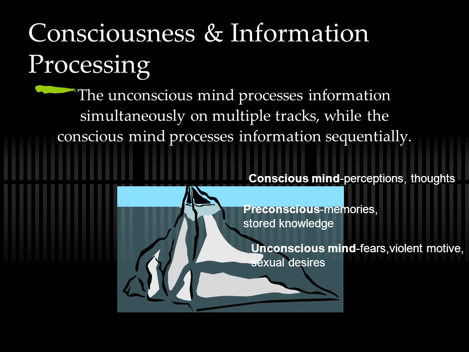 Consciousness & Information Processing