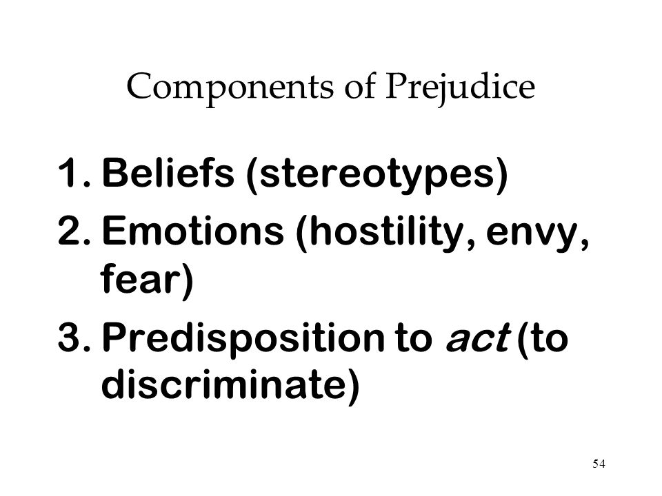 Components of Prejudice