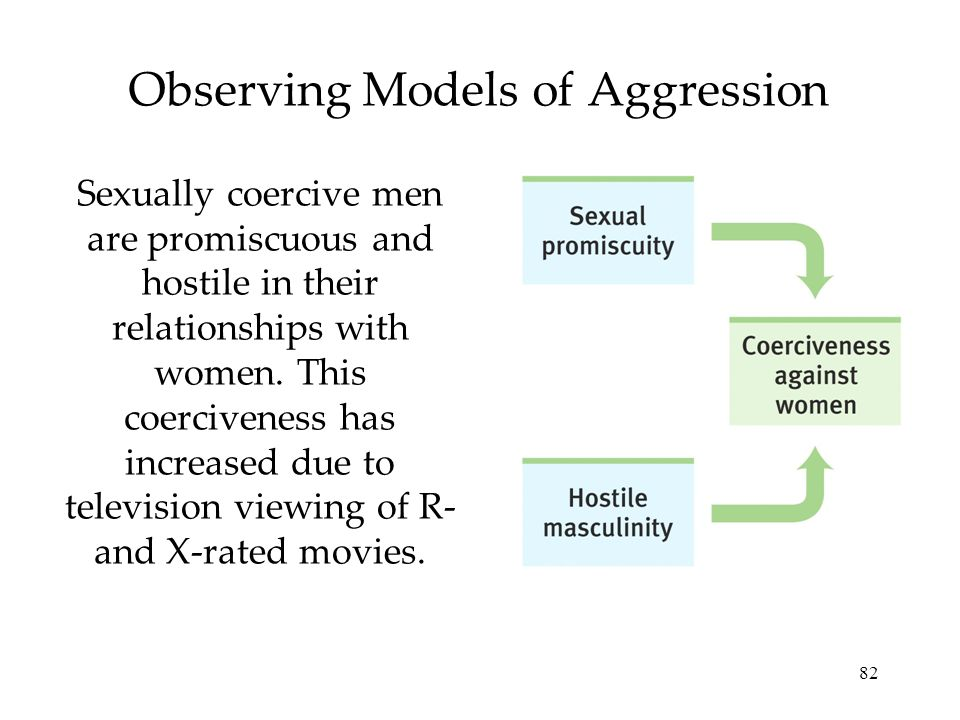 Observing Models of Aggression