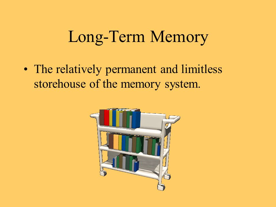 Long-Term Memory The relatively permanent and limitless storehouse of the memory system.