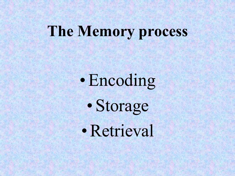 The Memory process Encoding Storage Retrieval
