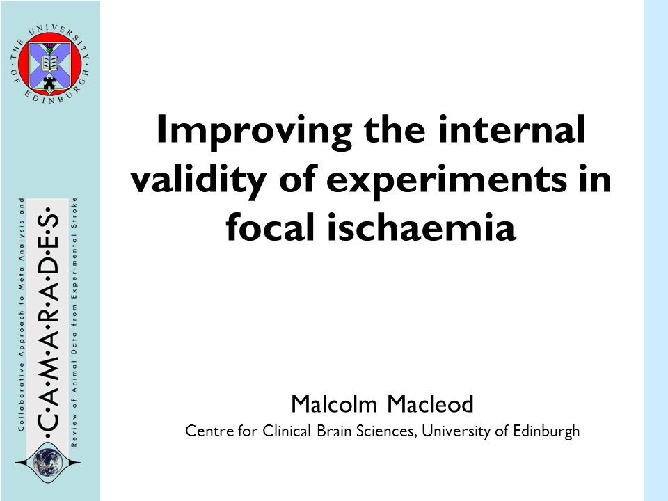 Improving the internal validity of experiments in focal ischaemia