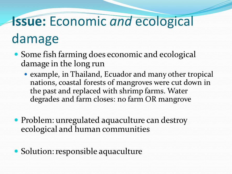 fish farming economic boon Table of contents hyperlinks to non-fao internet sites do not imply any official endorsement of or responsibility for the opinions the economic analysis of both fish farming and culture based fisheries possibilities have been carried out in collaboration with other team members.