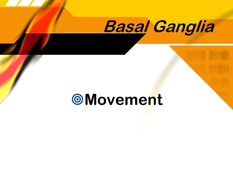 Basal Ganglia Movement