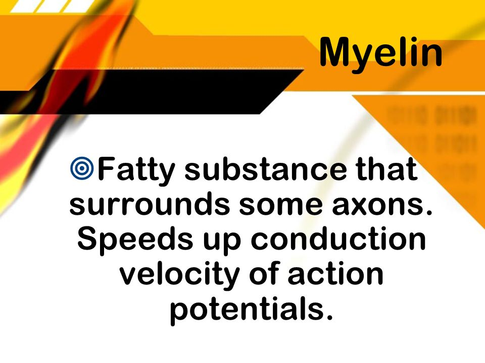 Myelin Fatty substance that surrounds some axons.