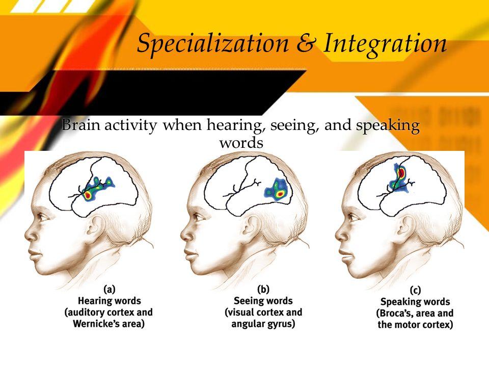 Specialization & Integration