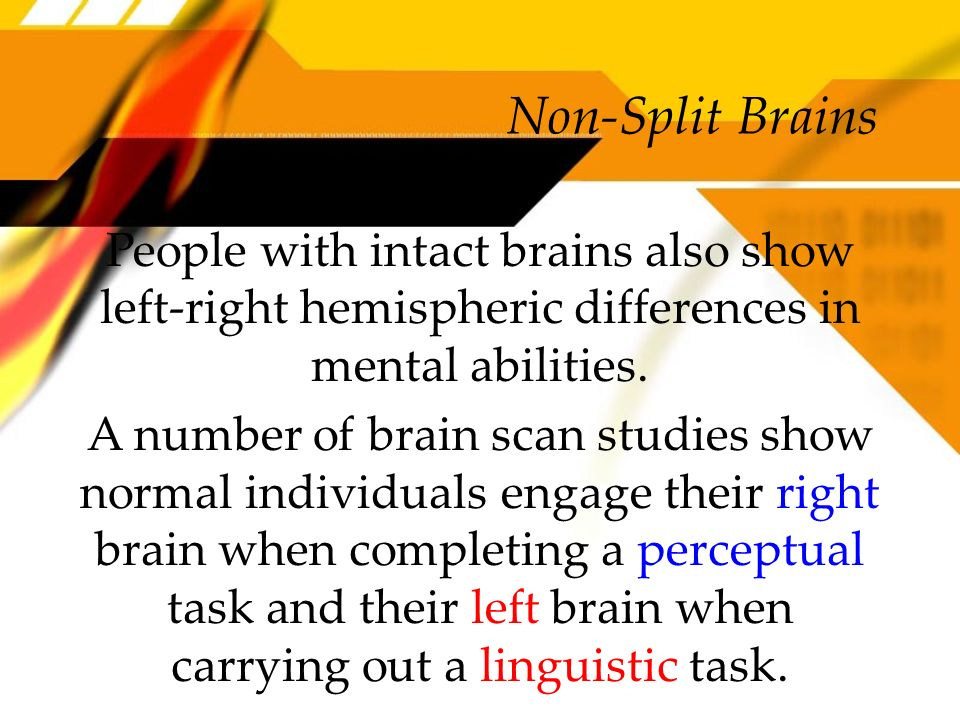 Non-Split Brains People with intact brains also show left-right hemispheric differences in mental abilities.