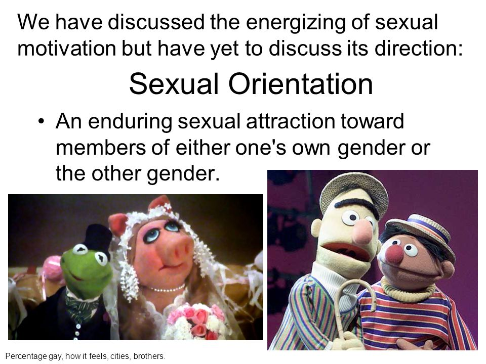 We have discussed the energizing of sexual motivation but have yet to discuss its direction: