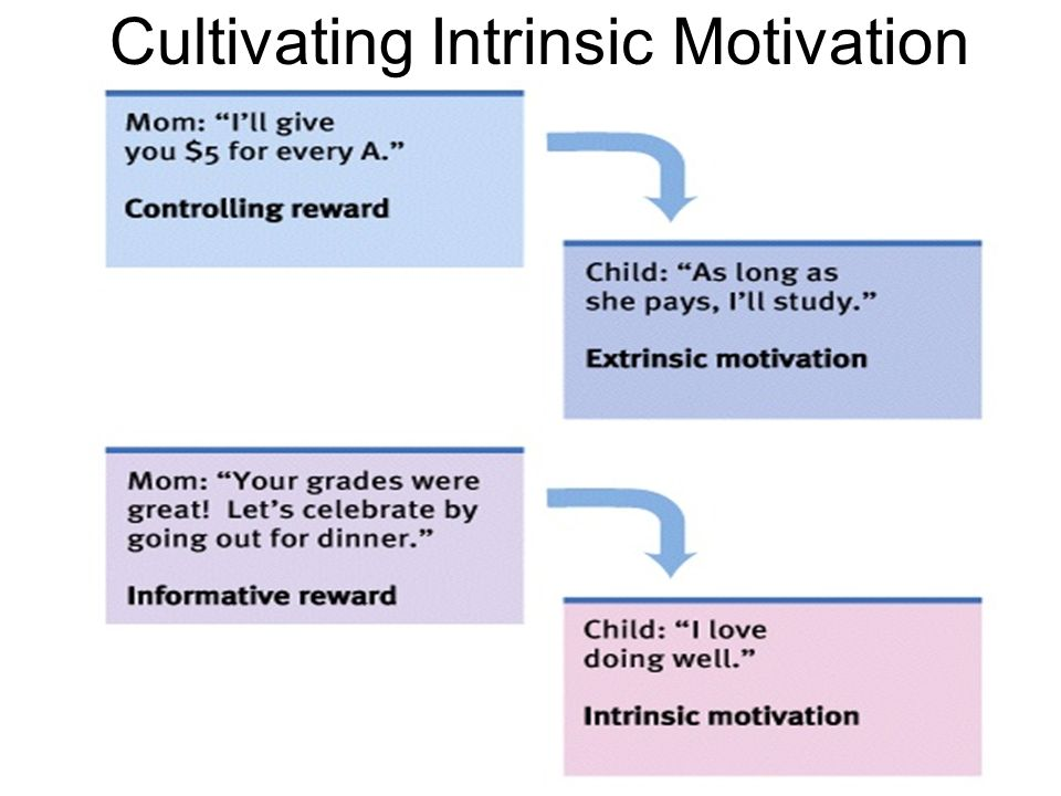 Cultivating Intrinsic Motivation