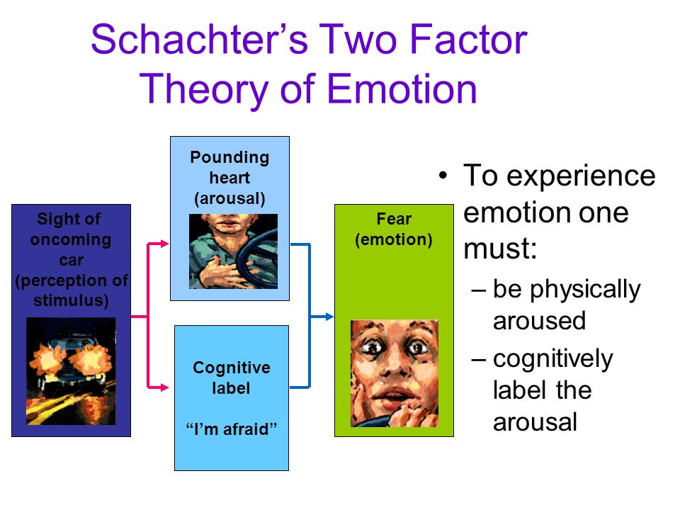 Schachter's Two Factor Theory of Emotion