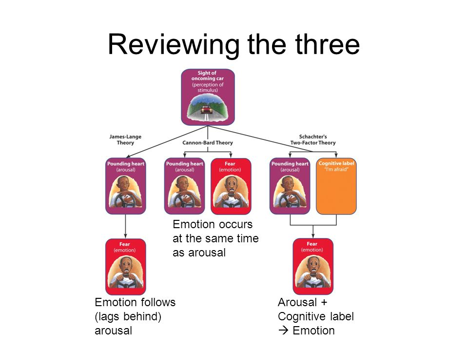 Reviewing the three Emotion occurs at the same time as arousal