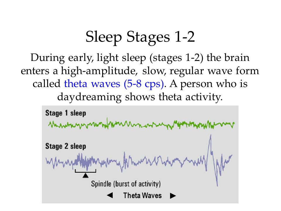 Sleep Stages 1-2