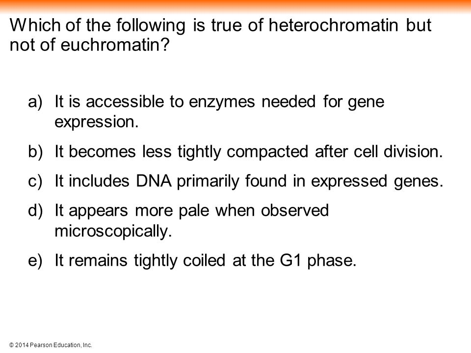 Which of the following is true of heterochromatin but not of euchromatin