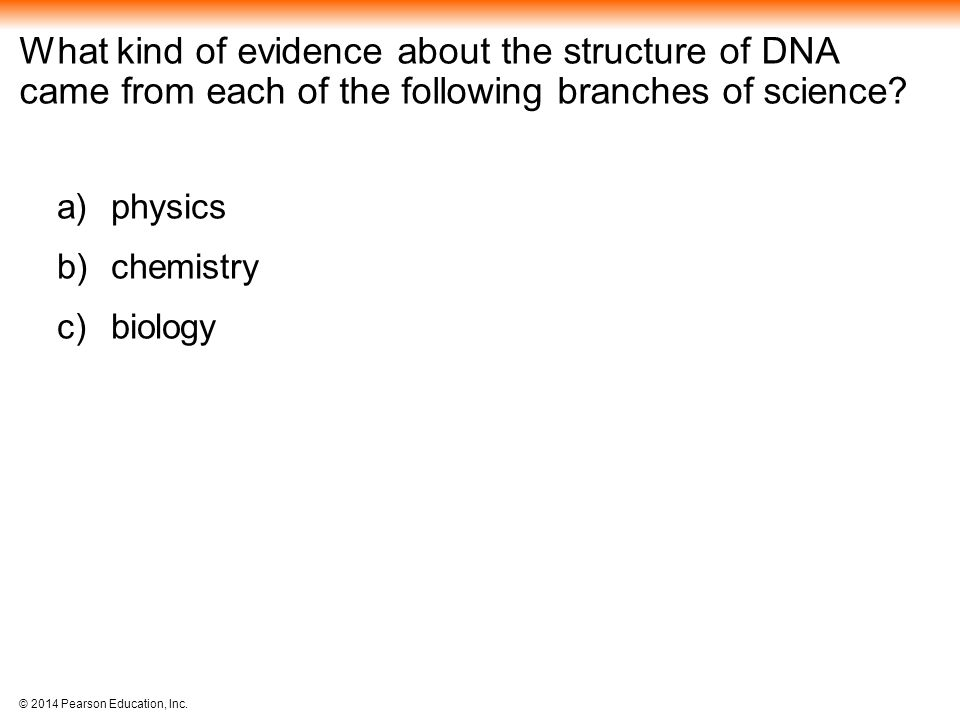 What kind of evidence about the structure of DNA came from each of the following branches of science